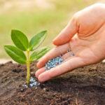 Удобрения на рынке Садовод купить для огородников (для роз)