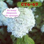 Юля Удол - женская одежда оптом