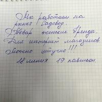 Елена Μедведева - женская одежда оптом: шорты, футболка, платья