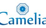Camelia - швейное производство (женская одежда оптом)