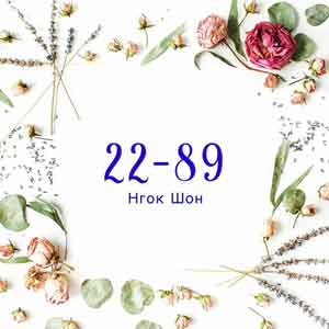 Нгок Шон - поставщик женской одежды