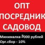 Виктория Кудрявцева - поставки мужской и женской одежды, обуви и украшений